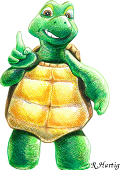 tortue2r